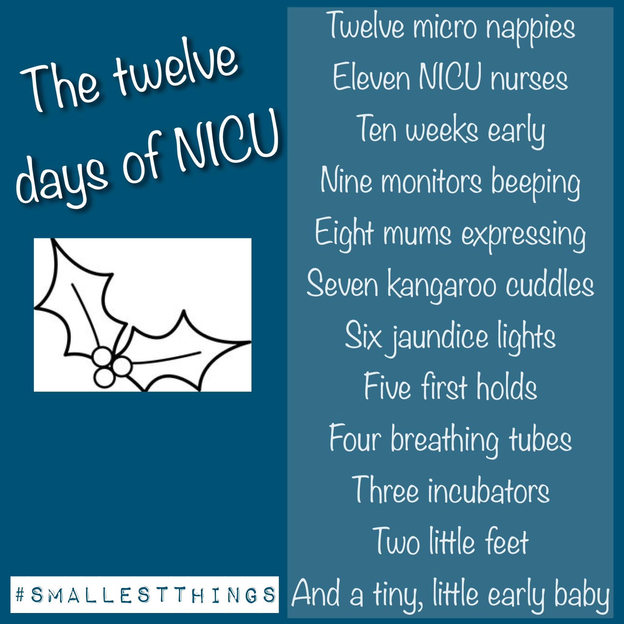 Twelve days of NICU! | The Smallest Things