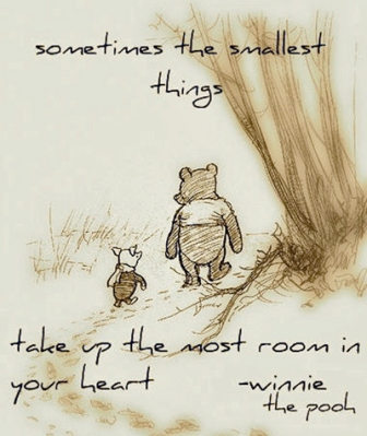 Winnie-the-pooh_the-smallest-things